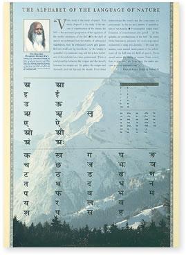 Sanskrit Alphabet Wall Poster